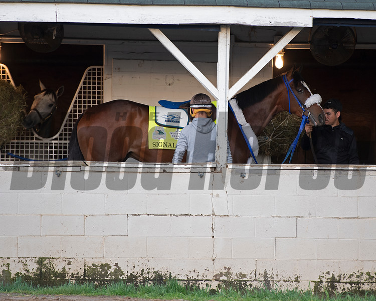 Signalman. Morning scenes at Churchill Downs during Derby week 2019  April 27, 2019 in Louisville,  Ky.
