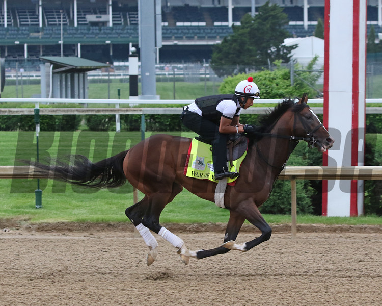 War of Will on the track at Churchill Downs on April 30, 2019. Photo By: Chad B. Harmon