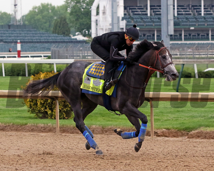 Roadster on the track at Churchill Downs on April 30, 2019. Photo By: Chad B. Harmon