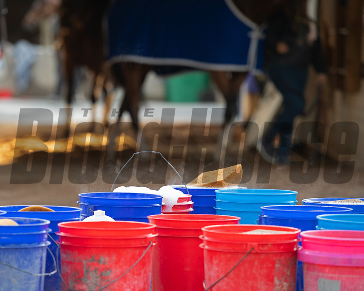 Morning scenes at Churchill Downs during Derby week April 27, 2019 in Louisville,  Ky.  Photo: Anne M. Eberhardt