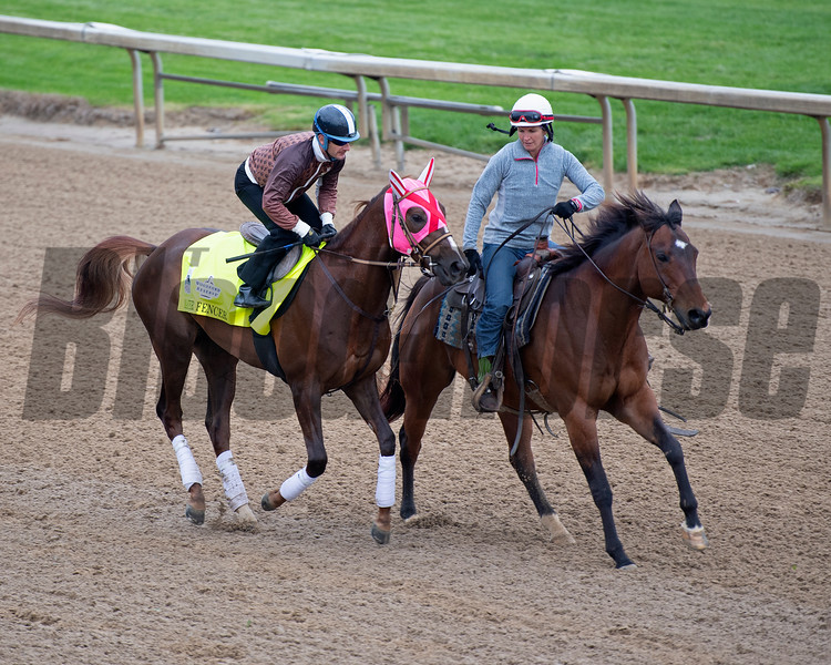 Master Fencer. Morning scenes at Churchill Downs during Derby week 2019  April 30, 2019 in Louisville,  Ky.