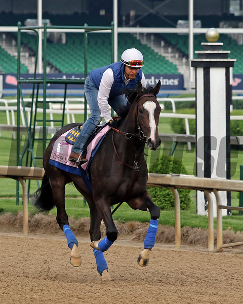 Flor De La Mar on the track at Churchill Downs on April 30, 2019. Photo By: Chad B. Harmon