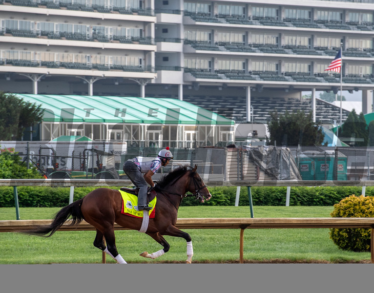 War of Will on the main track at Churchill Downs Thursday May 2, 2019 in Louisville, KY.<br /> Photo by Skip Dickstein
