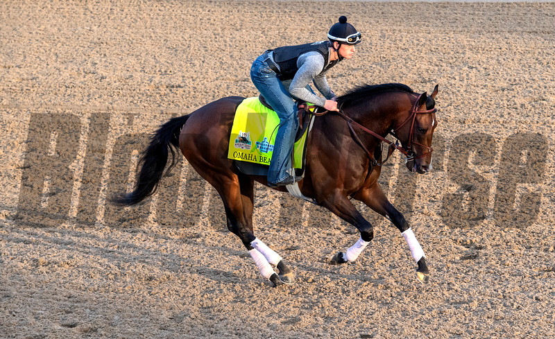 Omaha Beach goes out for a gallop on the main track at Churchill Downs Wednesday May 1, 2019 in Louisville, KY.<br /> Photo by Skip Dickstein
