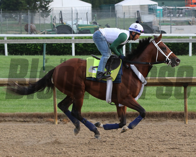 Maximum Security on the track at Churchill Downs on May 2, 2019. Photo By: Chad B. Harmon