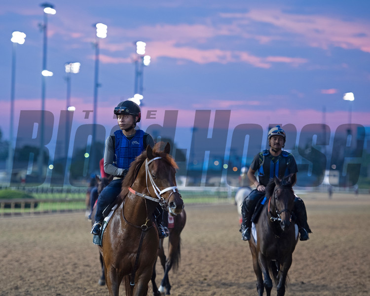 Scene. Morning scenes at Churchill Downs during Derby week 2019  April 30, 2019 in Louisville,  Ky.