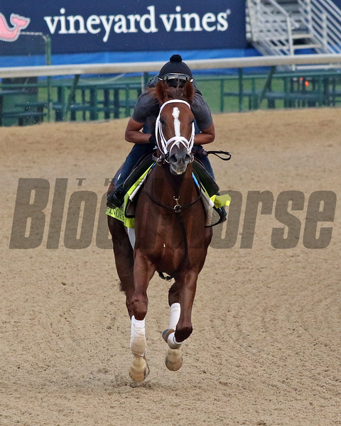 Spinoff on the track at Churchill Downs on May 2, 2019. Photo By: Chad B. Harmon