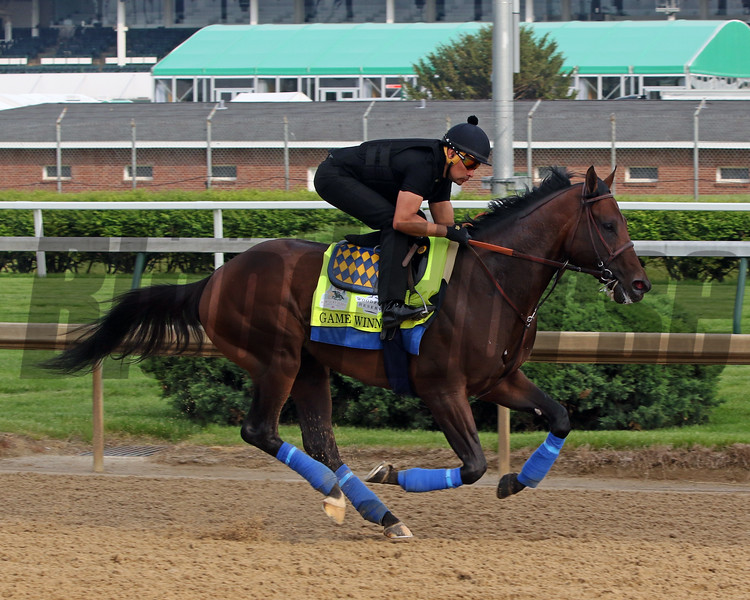 Game Winner on the track at Churchill Downs on April 30, 2019. Photo By: Chad B. Harmon