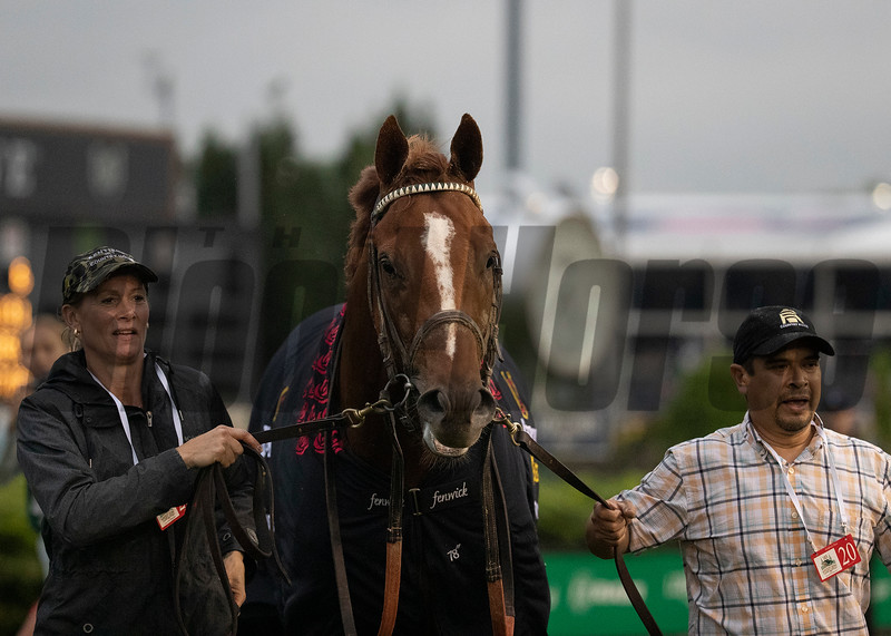 Country House leaving the winner's circle after winning the Kentucky Derby at Churchill Downs on May 4th, 2019.
