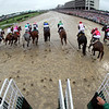 The start of the 145th Running of the Kentucky Derby at Churchill Downs on May 4, 2019. Photo By: Chad B. Harmon