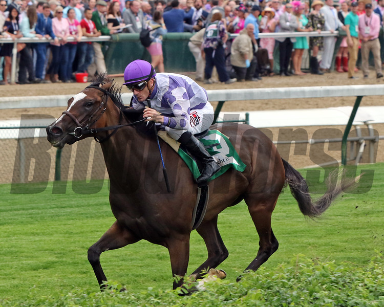 Concrete Rose with Julien Leparoux win the 35th Running of the Edgewood (GIII) at Churchill Downs on May 3, 2019. Photo By: Chad B. Harmon