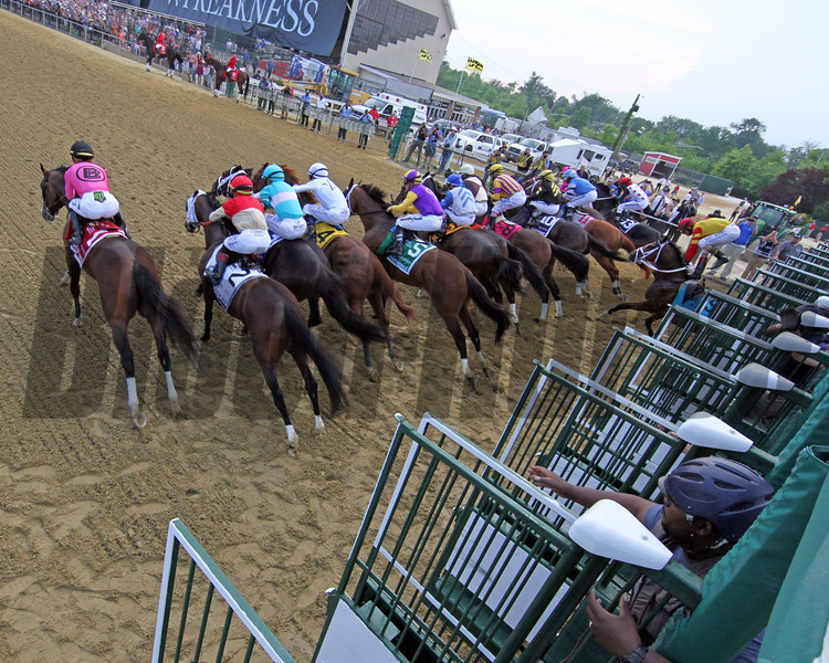The start of the 144th Running of the Preakness Stakes at Pimlico on May 18, 2019. Photo By: Chad B. Harmon