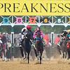 Preakness Start