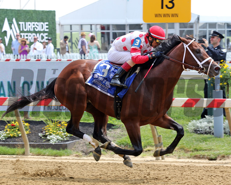 King for a Day with John Velazquez win the 22nd Running of the Sir Barton Stakes at Pimlico on May 18, 2019. Photo By: Chad B. Harmon
