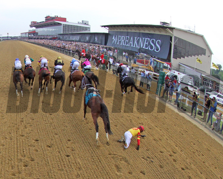 Bodexpress Starting Gate Remote Sequence #9 Photo By: Chad B. Harmon
