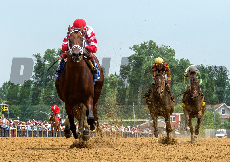 King for a Day with jockey John Velazquez aboard runs away from the field to win the 22nd running of The Sir Barton Stakes Saturday May 18, 2019 at Pimlico Race Course in Baltimore, MD.  Photo by Skip Dickstein