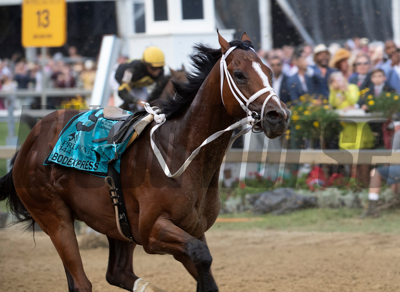 Bodeexpress gets loose at the start in the 144th running of The Preakness Stakes Saturday May 8th at Pimlico Race Course in Baltimore, MD.  Photo by