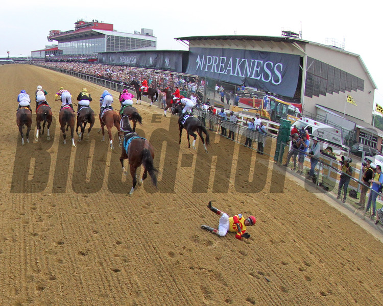 Bodexpress Starting Gate Remote Sequence #11 Photo By: Chad B. Harmon