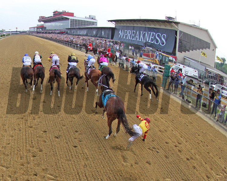Bodexpress Starting Gate Remote Sequence #8 Photo By: Chad B. Harmon