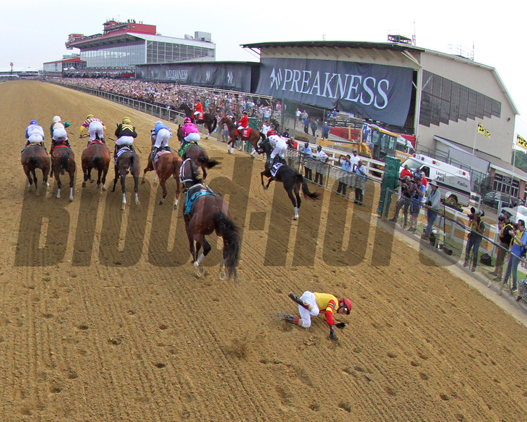 Bodexpress Starting Gate Remote Sequence #10 Photo By: Chad B. Harmon
