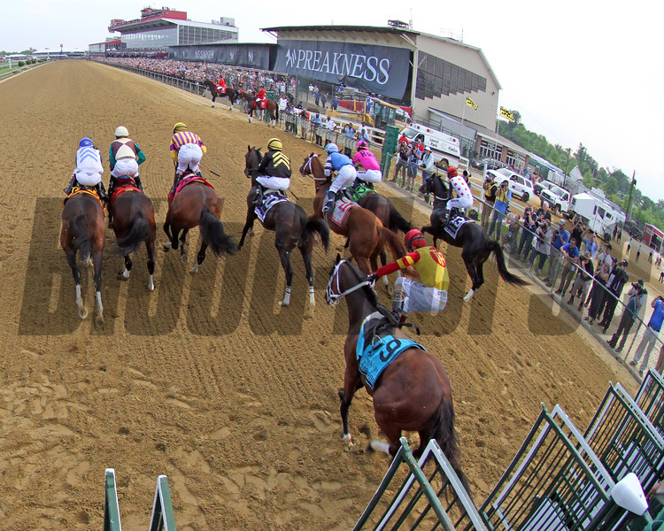 Bodexpress Starting Gate Remote Sequence #4 Photo By: Chad B. Harmon