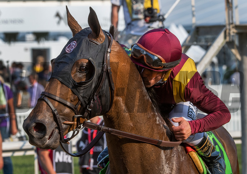 Jockey Javier Castellano gives Catholic Boy a kiss after he won the 118th running of The Maker's Mark Dixie Stakes (GII) at Pimlico Race Course Saturday May 18, 2019 in Baltimore, MD.  Photo by Skip Dickstein