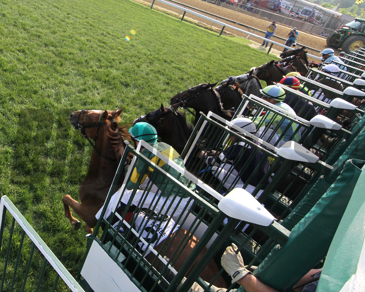 The start of the 118th Running of The Dixie Stakes (GII) at Pimlico on May 18, 2019. Photo By: Chad B. Harmon