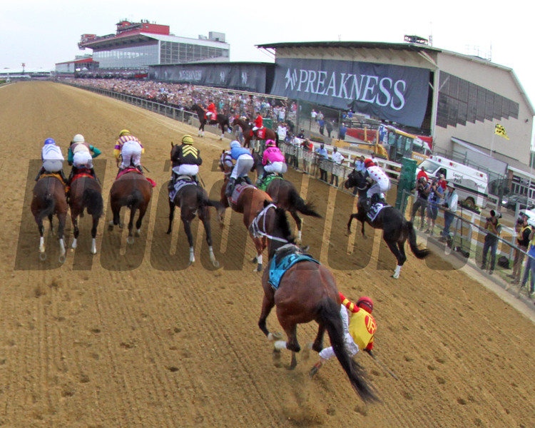 Bodexpress Starting Gate Remote Sequence #7 Photo By: Chad B. Harmon