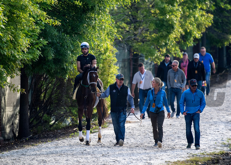 Trainer Mark Hennig at the head of Bourbon War leads a large group of investors back to the barn after a gallop at Pimlico Race Track in preparation for Saturday's Preakness Stakes Friday May 17, 2019 in Baltimore, MD.  Photo by Skip Dickstein