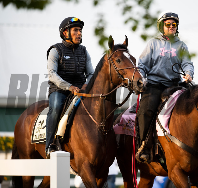 Always Mining out for a gallop at Pimlico Race Track in preparation for Saturday's Preakness Stakes Friday May 17, 2019 in Baltimore, MD.  Photo by Skip Dickstein