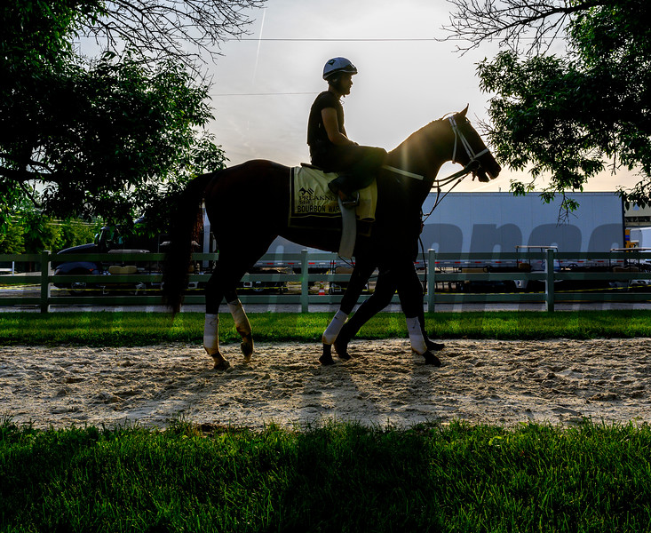 Trainer Mark Hennig at the head of Bourbon War at Pimlico Race Track in preparation for Saturday's Preakness Stakes Friday May 17, 2019 in Baltimore, MD.  Photo by Skip Dickstein