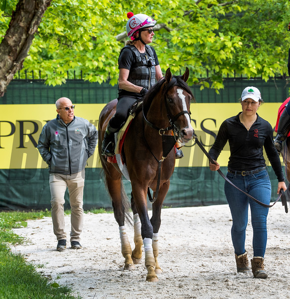 War of Will returns fromt his morning exercise at the Pimlico Race Course followed by his trainer Mark Casse, left, Thursday May 16, 2019 in Baltimore,MD.  Photo by Skip Dickstein