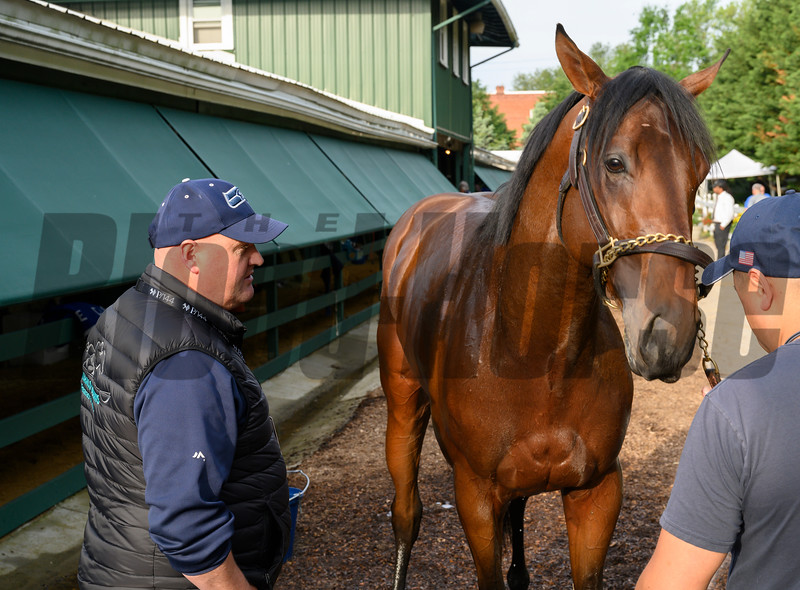Trainer Blaine Wright, left, with his charge Anothertwistoffate at Pimlico Race Track in preparation for Saturday's Preakness Stakes Friday May 17, 2019 in Baltimore, MD.  Photo by Skip Dickstein