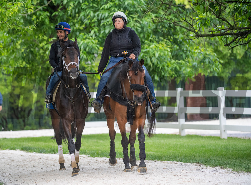 Warrior's Charge returns from his morning exercise at the Pimlico Race Course Thursday May 16, 2019 in Baltimore,MD Photo by Skip Dickstein