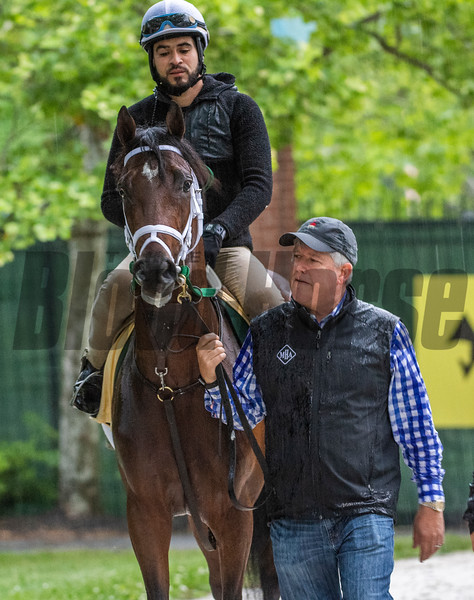 Trainer Mark Hennig leads Bourbon War to his barn after a preparatory gallop at the Pimlico Race Course Thursday May 16, 2019 in Baltimore,MD.  Photo by Skip Dickstein