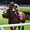 Decorated Invader wins the 2020 Pennine Ridge Stakes at Belmont Park    <br /> Coglianese Photos/Joe Labozzetta