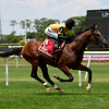 Decorated Invader wins the 2020 Pennine Ridge Stakes at Belmont Park    <br /> Coglianese Photos