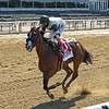 Gamine wins the 2020 Acorn Stakes at Belmont Park<br /> Coglianese Photos/Chelsea Durand
