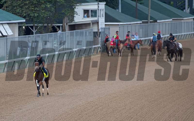 Caption:  Art Collector with Brian Hernandez after work<br /> Kentucky Derby and Oaks training at Churchill Downs near Louisville, Ky., on Aug. 28, 2020 Churchill Downs in Louisville, KY.