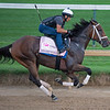 Caption: Shedaresthedevil<br /> Kentucky Derby and Oaks training at Churchill Downs near Louisville, Ky., on Aug. 28, 2020 Churchill Downs in Louisville, KY.