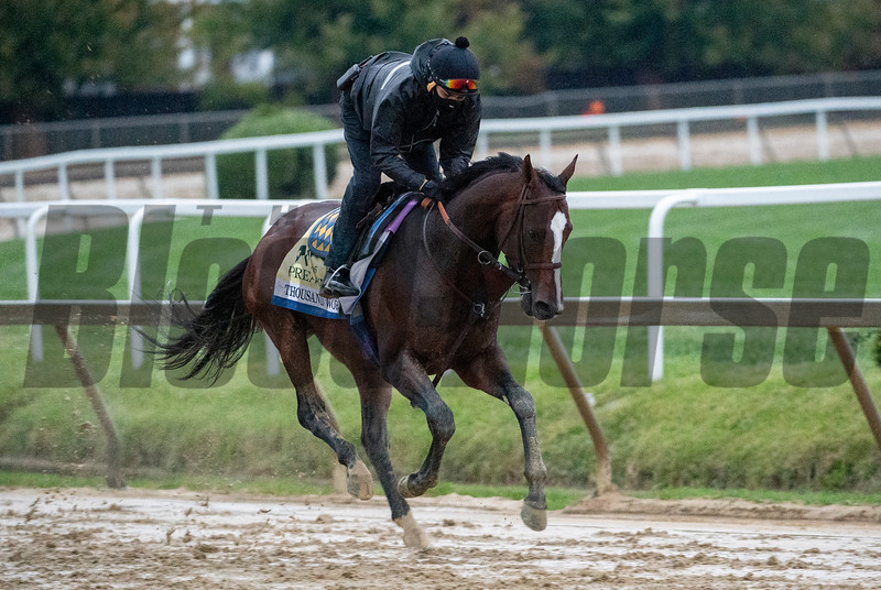 Thousand Words on the track at the Pimlico Race Course Friday Oct 2, 2020 in preparation for Saturday's 145th Preakness Stakes.in Baltimore, MD.  Photo by Skip Dickstein