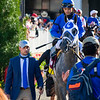 Essential Quality before the Kentucky Derby (G1) at Churchill Downs in Louisville, Kentucky on May 1, 2021.