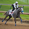 Crazy Beautiful<br /> Kentucky Derby and Oaks horses, people and scenes at Churchill Downs in Louisville, Ky., on April 24, 2021.