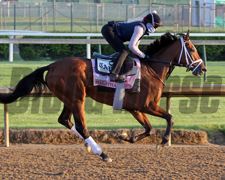 Malathaat on the track at Churchill Downs on April 26, 2021. Photo By: Chad B. Harmon