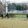 Caption: JUVENILE Street Sense, Calvin Borel looks back for the competition<br /> Breeders' Cup day on November 4, 2006, at Churchill Downs in Louisville, Ky.<br /> Origs2 image12<br /> Photo by Anne M. Eberhardt