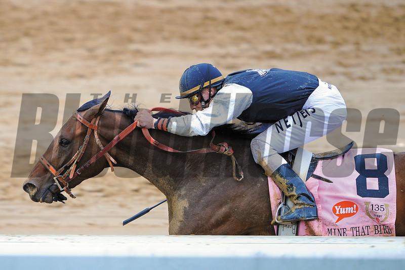 Mine That Bird wins the 2009 Kentucky Derby at Churchill Downs.<br /> Photo by: Mathea Kelley