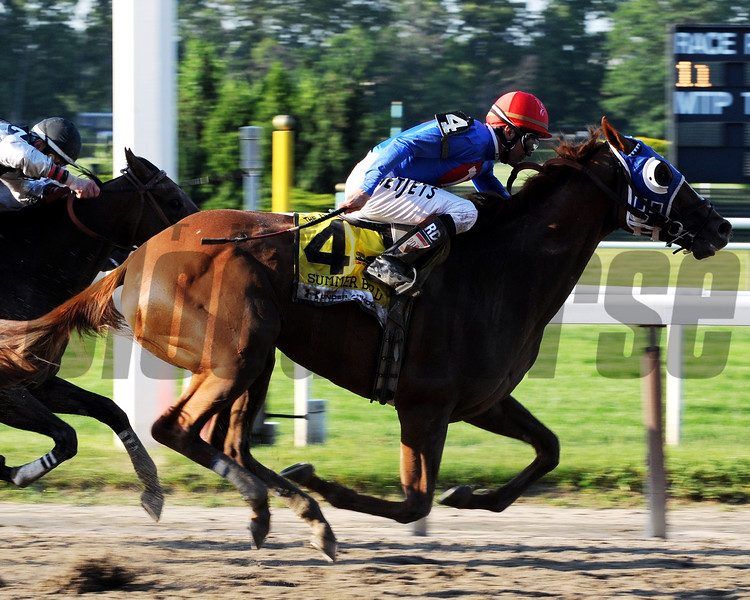 Summer Bird wins the 2009 Belmont Stakes<br /> Dave W. Harmon