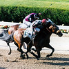 Lemon Drop Kids wins the 1999 Belmont Stakes at Belmont Park.
