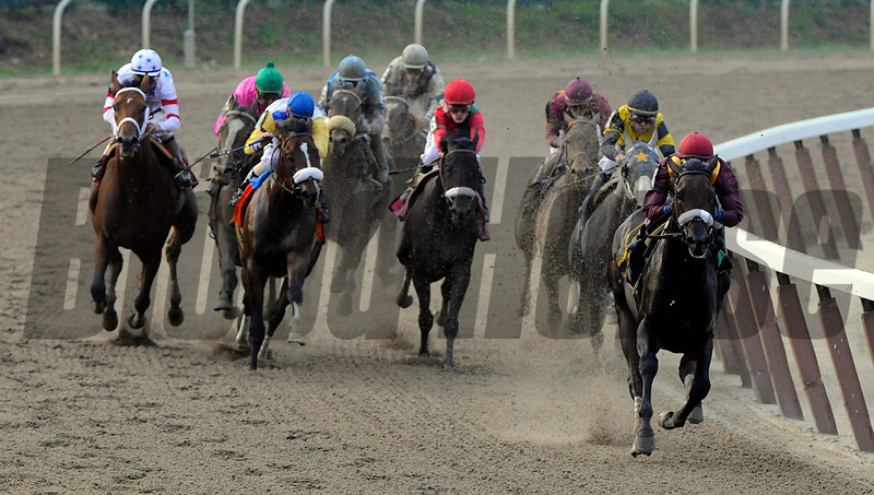 Belmont Stakes 2008- <br /> <br /> Belmont Stakes 2008- Race Action Da' Tara breaks away around turn four.