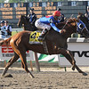 Summer Bird wins the 2009 Belmont Stakes<br /> Coglianese Photos